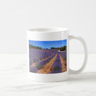 Mug Lavender field