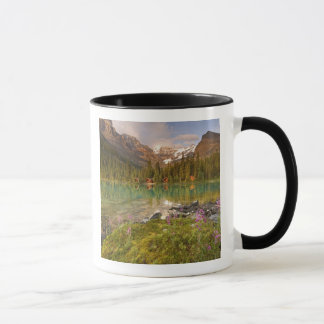 Mug Le Canada, Colombie-Britannique, parc national de