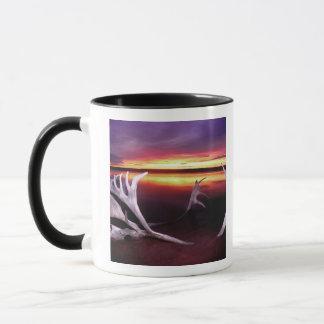 Mug Le Canada, Territoires du nord-ouest, lac