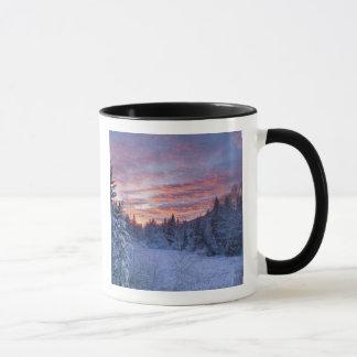 Mug Le coucher du soleil vif peint le ciel au-dessus