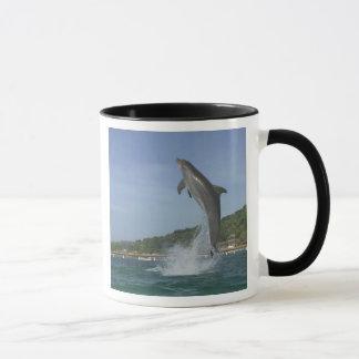 Mug Le dauphin sautant, Roatan, îles de baie, Honduras