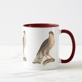 Mug Le faucon ardoisé(fuscus d'Astur)