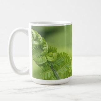 Mug Le feuille de bordage de fougère, verdure, a