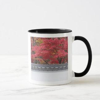 Mug Le Japon, Kyoto, couleur d'automne au temple