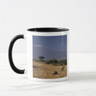 Mug Le Kenya : Amboseli, deux guépards ('Acinonyx