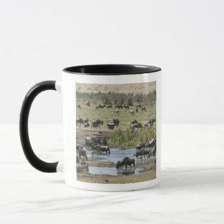 Mug Le Kenya, aucune eau aucune expédition de rivière