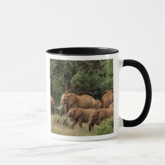 Mug Le Kenya : Le parc national est de Tsavo, vivent