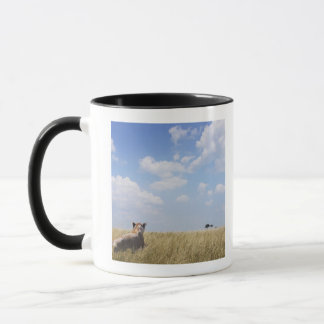 Mug Le Kenya, masai Mara