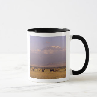 Mug Le Kenya : Parc national d'Amboseli, éléphants et