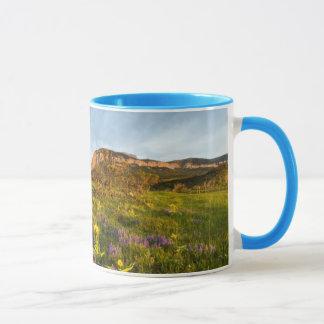 Mug Le lever de soleil allume le canyon de Blackleaf