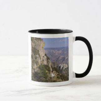 Mug Le Mexique, état de chiwawa, canyon de cuivre. CES
