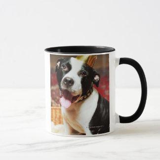 Mug Le nom latin pour tous les chiens domestiques est