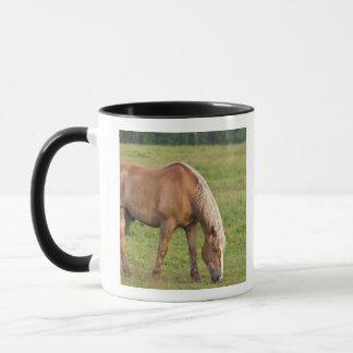 Mug Le Nouveau Brunswick, Canada. Cheval dans le