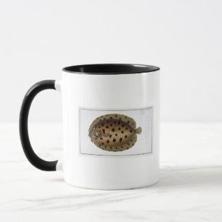 Mug Le plat CLXXXIX f de bouffée (Pleuronectus
