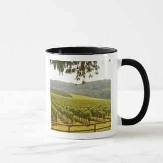 Mug Le vignoble et une vallée avec une forêt -
