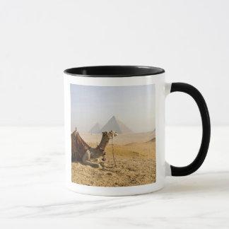 Mug L'Egypte, le Caire. Un chameau solitaire regarde