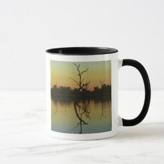 Mug Les arbres morts se sont reflétés dans la lagune