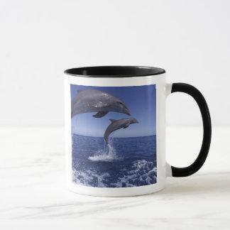 Mug Les Caraïbe, Tursiops 12 de dauphins de Bottlenose