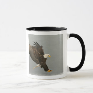 Mug Les Etats-Unis, Alaska, Homer. Aigle chauve dans