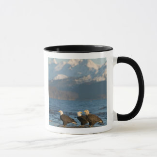 Mug Les Etats-Unis, Alaska, Homer, Haliaeetus d'Eagles
