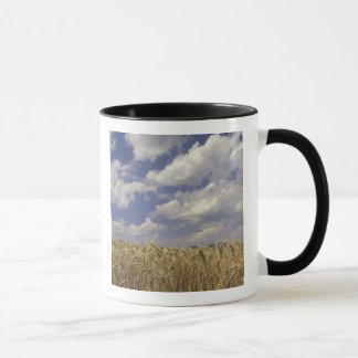 Mug Les Etats-Unis, Kentucky, Louisville. Culture de