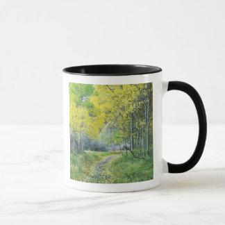 Mug Les Etats-Unis, la Californie, sierra orientale