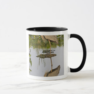 Mug Les Etats-Unis, la Floride, Delray Beach. Héron de