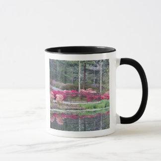 Mug Les Etats-Unis, la Géorgie, montagne de pin.
