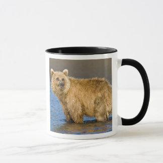 Mug LES Etats-Unis. L'Alaska. Pêche côtière d'ours de