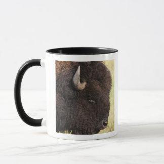 Mug Les Etats-Unis, le Dakota du Sud, bison américain