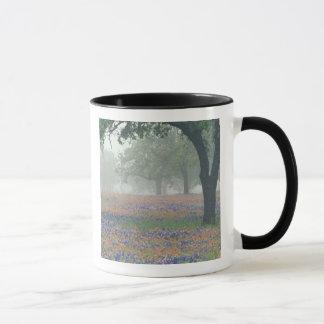 Mug Les Etats-Unis, le Texas. Pinceau et bluebonnets