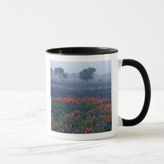 Mug Les Etats-Unis, le Texas, près du brouillard de