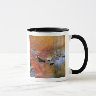 Mug Les Etats-Unis, New York, Adirondacks, feuille