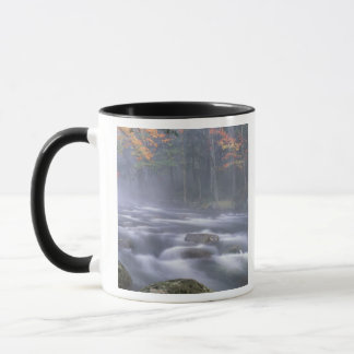 Mug Les Etats-Unis, New York, Adirondacks, grande