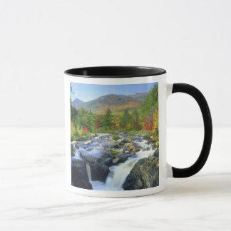 Mug Les Etats-Unis, New York. Une cascade dans