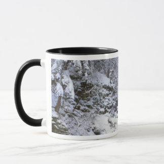 Mug Les Etats-Unis, Orégon, gorge du fleuve Columbia