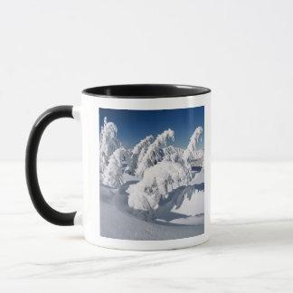 Mug Les Etats-Unis, Orégon, lac NP crater. Abattement