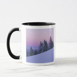 Mug Les Etats-Unis, Orégon, réserve forestière de