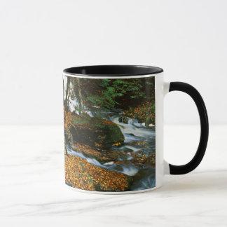 Mug Les Etats-Unis, Pennsylvanie, parc d'état de gorge