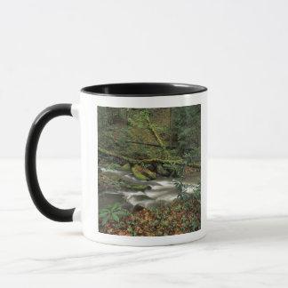 Mug Les Etats-Unis, Tennessee. Grande rivière de
