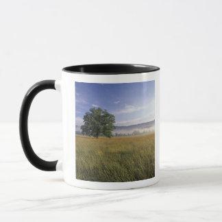 Mug Les Etats-Unis, Tennessee. Grandes montagnes de