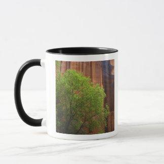 Mug Les Etats-Unis, Utah, falaises de vermillon de