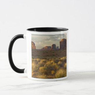 Mug Les Etats-Unis, Utah, parc national de vallée de