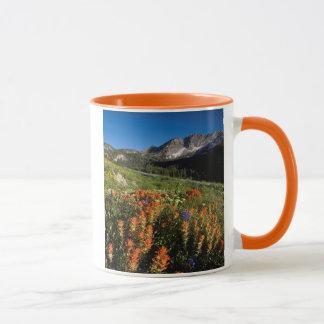 Mug Les Etats-Unis, Utah, réserve forestière