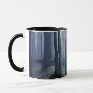 Mug Les Etats-Unis, Washington, île d'orques, parc