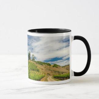 Mug Les Etats-Unis, Washington, lac Chelan. Vignoble 3