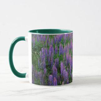 Mug Les Etats-Unis, Washington, le comté de Clallam,