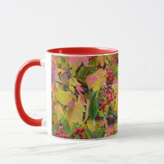 Mug Les Etats-Unis, Washington, le comté de Spokane,