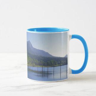 Mug Les Etats-Unis, Washington, parc d'état de roche