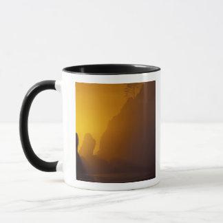 Mug Les Etats-Unis, Washington, parc national